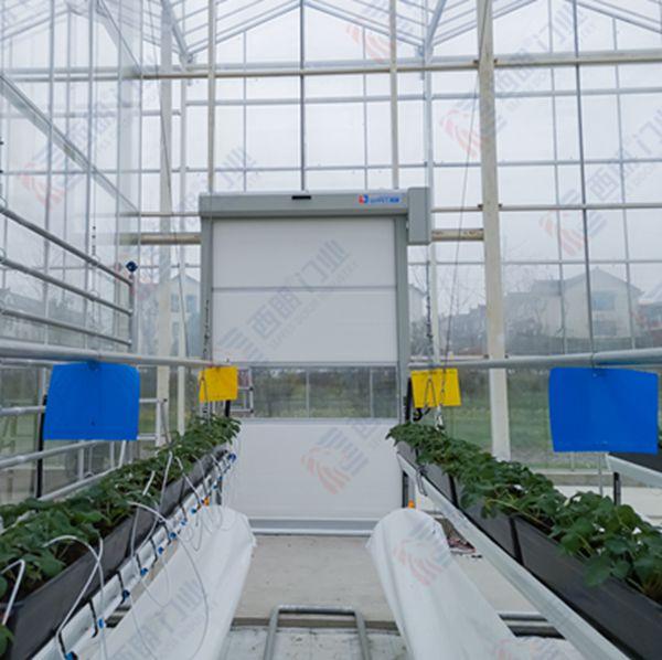 上海世合有机农园